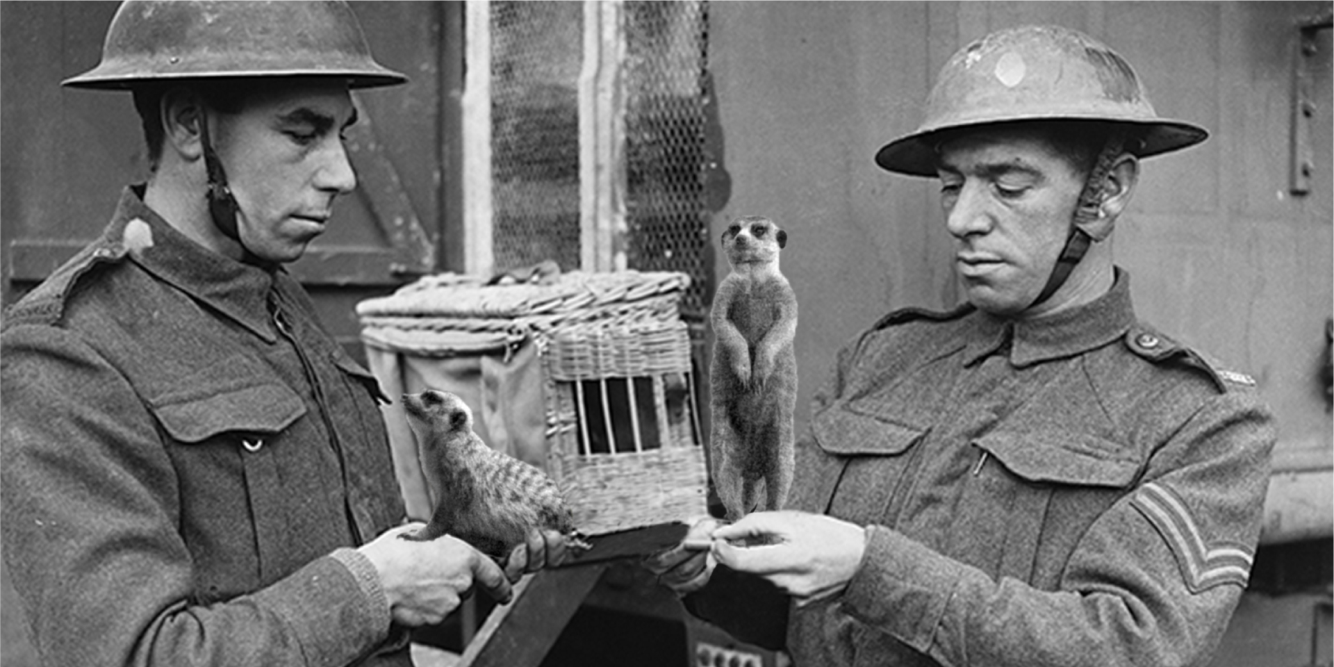 "Discovery at Eden Camp: ""Operation Simples"""